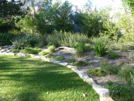 Backyard oasis with sandstone edging, native plants and buffalo turf