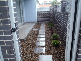 Stepping stones, compact shrubs and pebbles to create a low maintenance courtyard garden